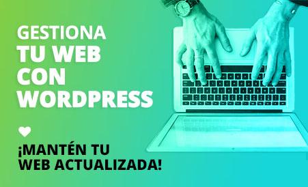 clases particulares para gestionar tu web en Wordpress en Donostia San Sebastián
