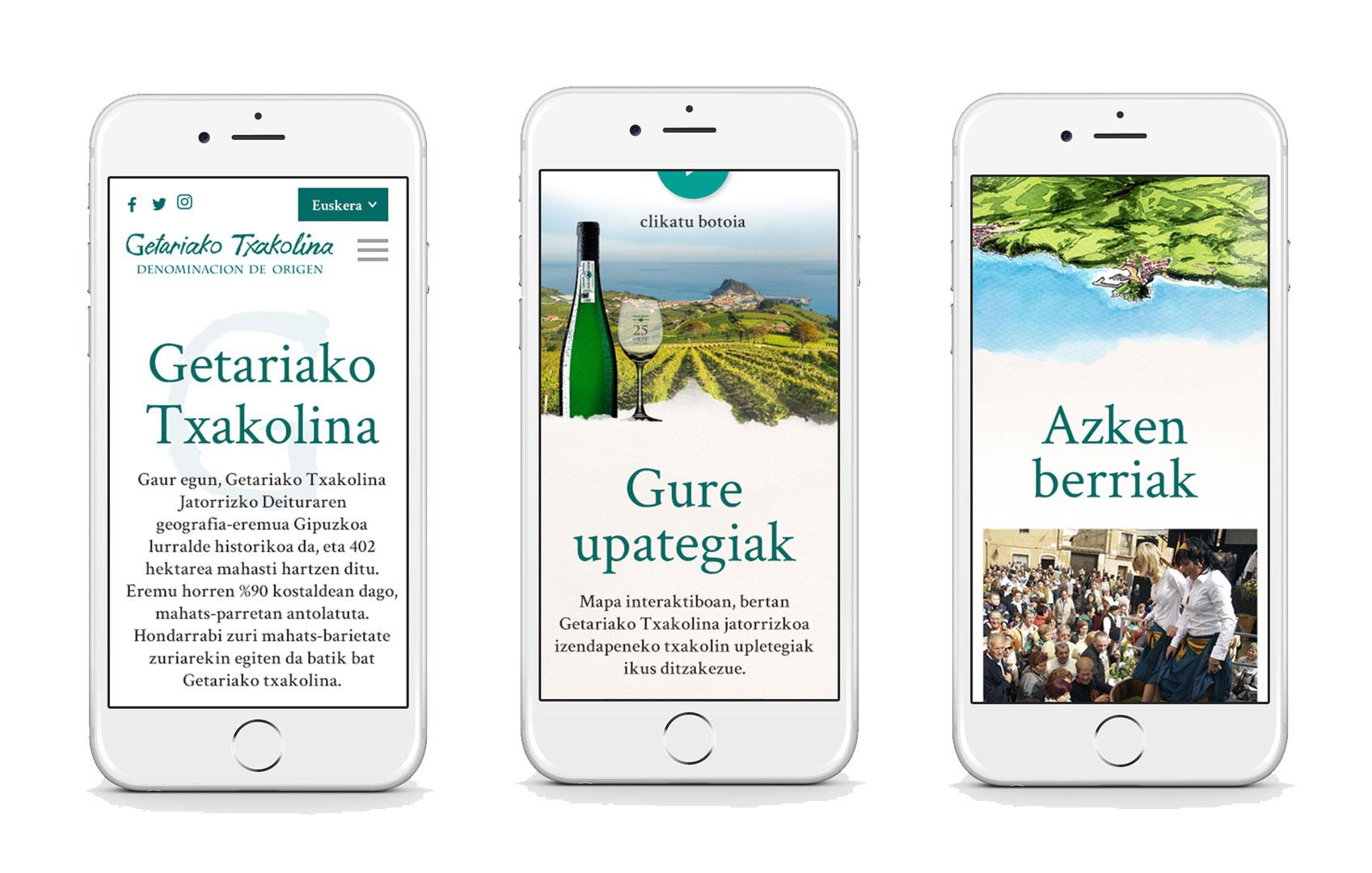 Diseño Web Getariako Txakolina
