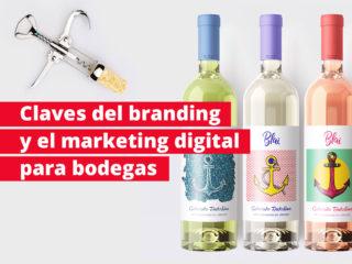 ¿Qué hace que un cliente escoja un vino? Claves del branding y el marketing digital para bodegas